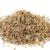 Główne odmiany zbóż cz. 23