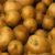 Ziemniak, rabarbar i sałata
